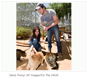 """Pretty Little Liars"" Star Ian Harding Visits Rescued Animals at Fund for Animals Wildlife Center"