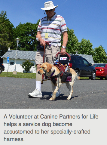 Canine Partners, America's Charities Member