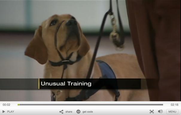 CPL Prison & Pups Program