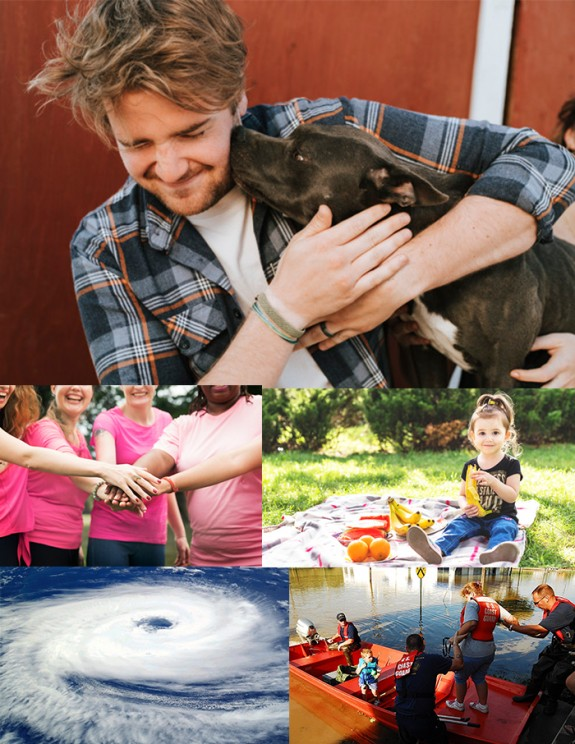 Cause fund - donate once to support multiple charities