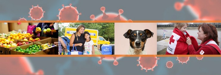 Support America's Charities Nonprofit Members Helping Communities Impacted by Coronavirus